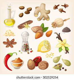Spices, condiments and herbs decorative elements and icons. Seeds, fruit, flower buds, leaves, blends and roots of condiment plants.