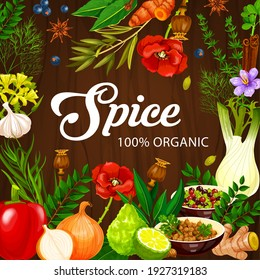 Spices and herbs, cooking seasonings and condiments vector herbal vegetables. Organic farm herbs and flavoring seasonings garlic and rosemary, culinary cinnamon, lime and ginger, celery and pepper