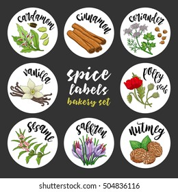 Spices and herbs jar labels and stickers. Colored vector condiment bakery set with cardamom, coriander, cinnamon, vanilla, poppy seed, sesame, nutmeg, saffron. Botanical illustrations.