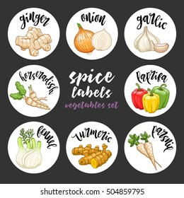 Spices and herbs jar labels and stickers. Colored vector condiment vegetables set with ginger, onion, garlic, horseradish, paprika, fennel, turmeric, parsnip. Botanical illustrations