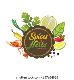 Spices and Herbs Set Illustration Vector