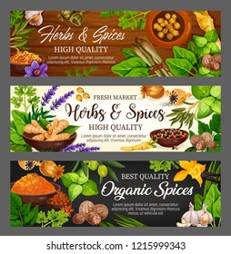 Spices, herbs and vegetable greens, food seasonings, condiments. Vector parsley, mint and garlic, pepper and basil, vanilla flower and ginger, oregano, saffron and turmeric, cardamom and nutmeg