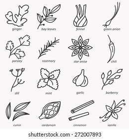 Spices icons