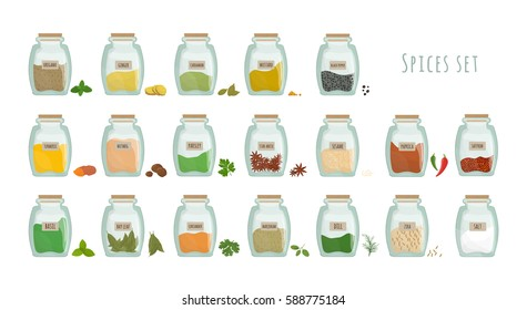 spices in jars, big set. collection flat vector illustration.