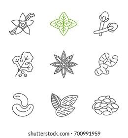 Spices linear icons set. Thin line contour symbols. Seasonings, flavorings. Vanilla flower, basil, clove, coriander, anise, ginger, cashew nuts, almond, pinenuts. Isolated vector outline illustrations