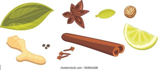 Spices for masala tea. Vector