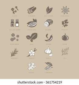 Spices Set, Vector Illustration Collection pastel shades of beige