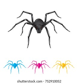 spider animal vector