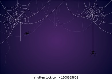 Spider and cobweb background. The scary of the halloween symbol Isolated on blue and purple vector illustration.