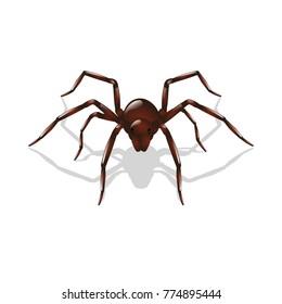 spider vector spider