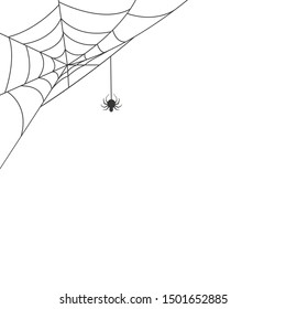 Spider web in the corner with a hanging spider. Vector illustration