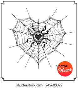 Spider and web in form of heart. Gothic concept on Valentine's Day in a sketch style. Isolated on white background. Vector Illustration.