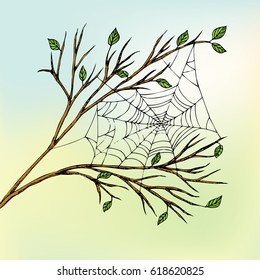 The spider web hangs between the branches. Indian summer. Color sketch. Hand drawn vector Illustration.