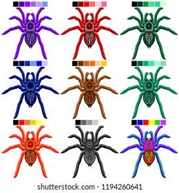 Spiders Tarantulas Set of 9 Colors