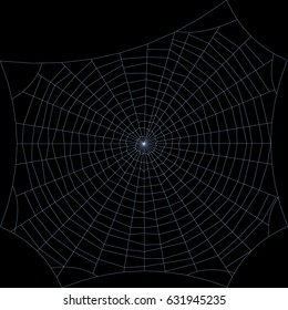 Spiderweb. Isolated on black background. Vector outline illustration.