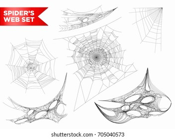 Spiderweb or spider web cobweb 3D shapes vecto isolated icons