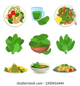 Spinach icons set. Cartoon set of spinach vector icons for web design
