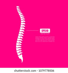 Spinal column vector icon illustration isolated on pink background