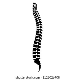 Spine human graphic icon. Spinal column sign in the circle isolated on white background. Vector illustration