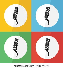 Spine icon ( flat design ) on different color background ( lateral view ) Use for spine disease ( spondylosis , spondylolisthesis , scoliosis , spondylolysis , disc herniation , fracture , etc )