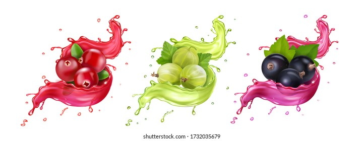 Splash of juice. Cranberry, gooseberry, black currant summer fruits and berries. 3d realistic vector icon set,