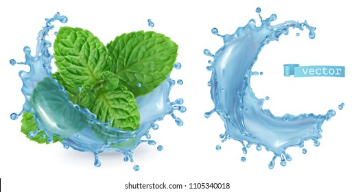 Splash water and mint. 3d realistic vector