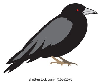 Spooky Black Raven with Red Eyes