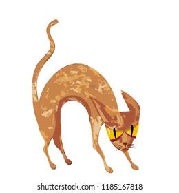 spooky red cat  - Halloween vector caracter for banner or flyer halloween template