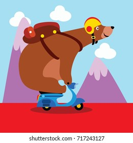 Sport animal series. Cute bear riding his motor cycle