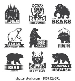Sport labels with illustrations of animals. Pictures of bears for logo design. Vector bear wild, grizzly animal silhouette badge or logo