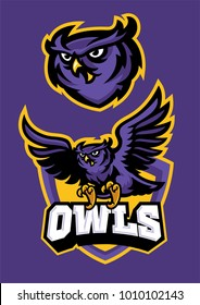 sport mascot style of owl in set