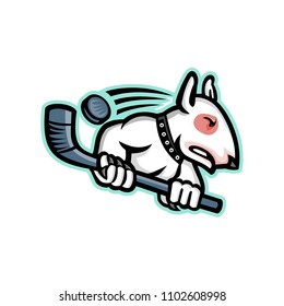 Sports mascot icon illustration of a bull terrier or wedge head holding an ice hockey stick with puck at back viewed from side on isolated background in retro style.