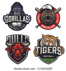 Sports teams colorful emblems set with ferocious gorilla grizzly red bull tiger mascots letterings soccer ball and crossed baseball clubs in vintage style isolated vector illustration