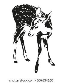 Spotted deer black and white color, illustration design.