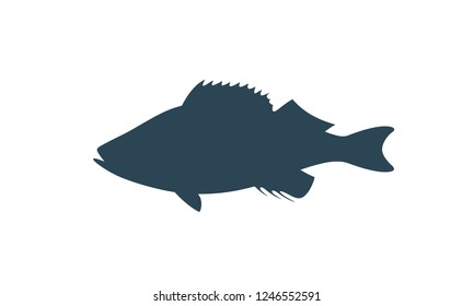 Spotted Grouper silhouette.  Isolated grouper on white background
