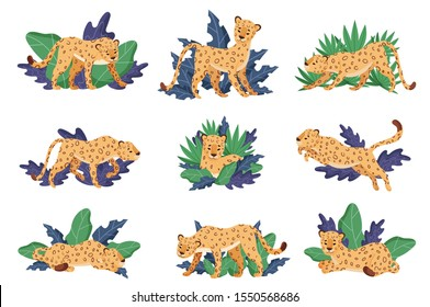 Spotted Leopard and Tropical Greenery Vector Illustrations Set