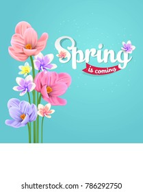Spring background with beautiful flower and color