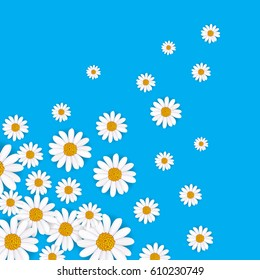 Spring background with blooming chamomile flower vector illustration. Floral decorated spring design, romantic celebration template, feast congratulation, nature seasonal flowering backdrop