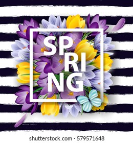 Spring background with blooming spring flowers, crocuses. Vector illustration