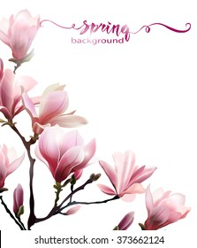 Spring background with blossom brunch of  Magnolia. Template Vector.