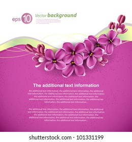 Spring background for the design of flowers. Vector illustration
