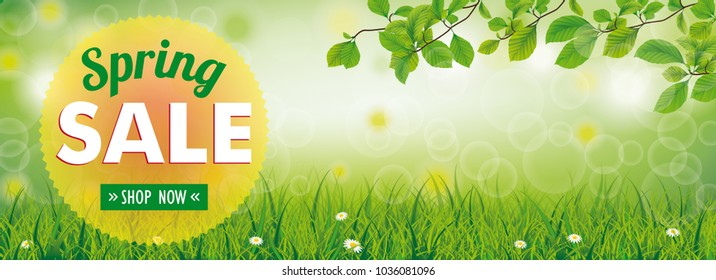Spring banner with nature and text Spring Sale, Save Now. Eps 10 vector file.