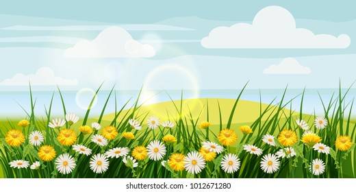 Spring beautiful scenery, fields, chamomile flowers, dandelions, clouds, cartoon style, vector, illustration, isolated