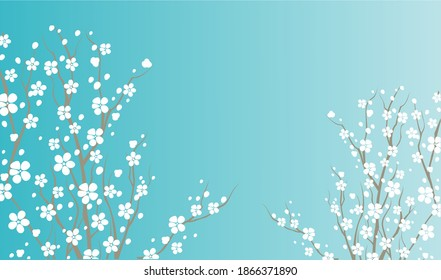 Spring Blue and white flower background