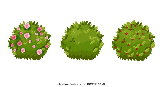 Spring bush, shrub green garden cartoon hedge set with green leaves, flower blossom,berries. Summer landscape nature cartoon objects collection isolated on white. Spring round bush plants floral icons