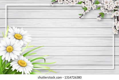 Spring card with chamomiles, blooming branch and grass on wooden background.  Background for invitation, discount offer or flyer. Realistic detailed vector template.