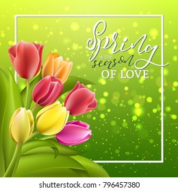 Spring card with tulip flowers on sparkle yellow green background. Vector illustration EPS10