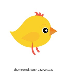 Spring chicken. Yellow bird, cartoon animal, chick. Animals concept. Vector illustration can be used for topics like Easter, spring holidays, country