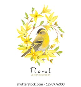 Spring decor with bird Siskin, blossoming yellow flowers and green leaves on branches Forsythia. Vector illustration in watercolor style on white background.