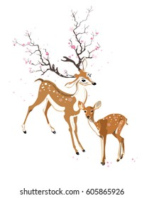 Spring deer and fawn